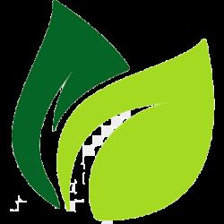 Yeşiller ® Halı Yıkama